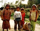 Nepali children working